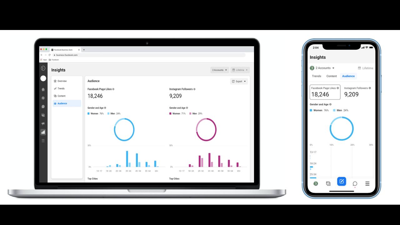 Facebook Business Suite - statistieken en insights - IN ZICHT Marketing